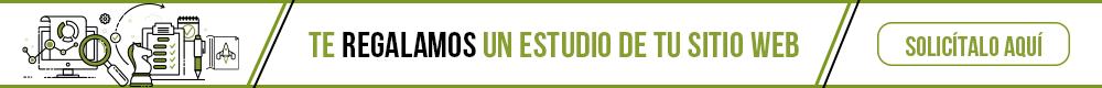 Estudio Web SEO México